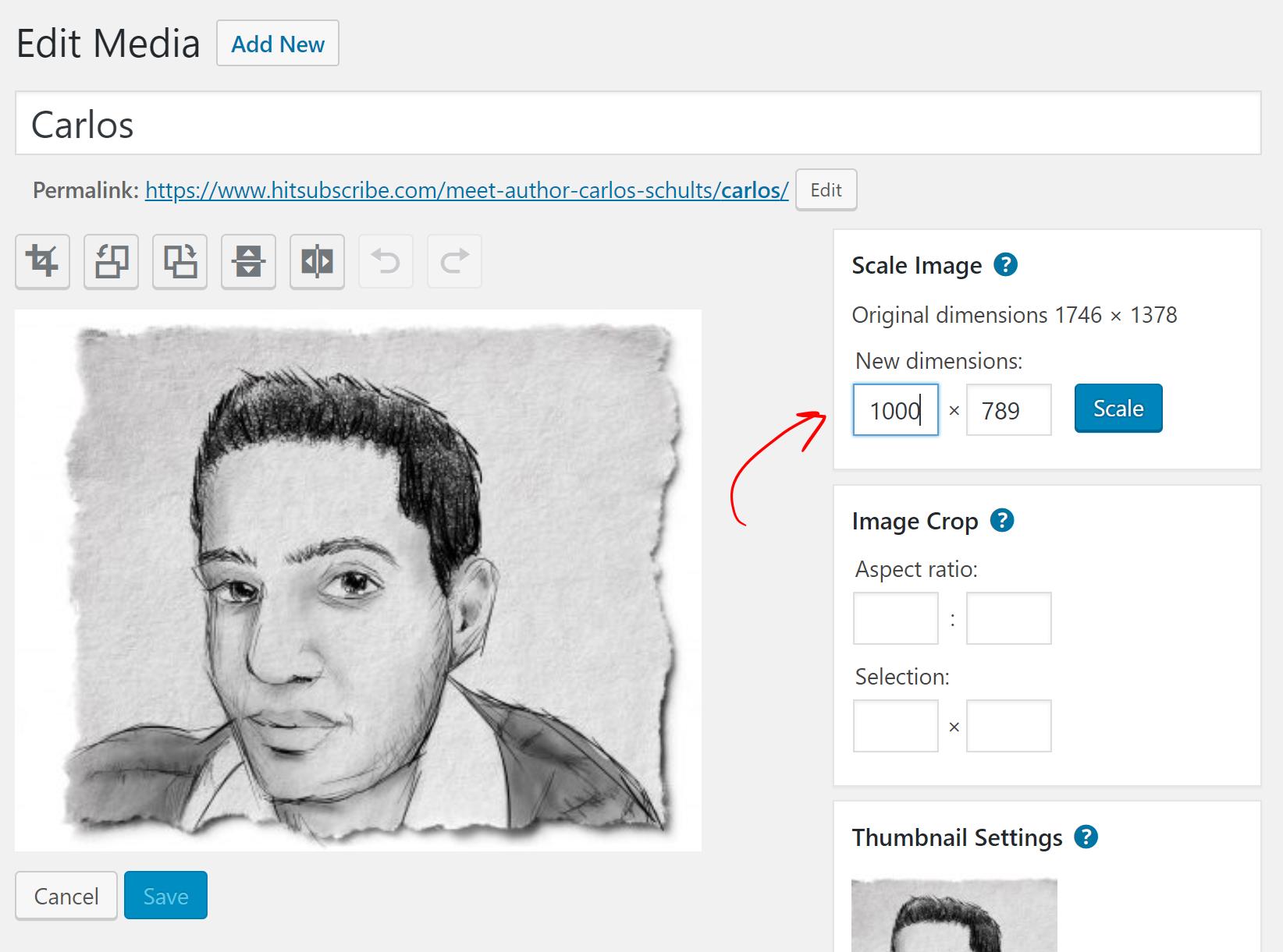 shrink image in WordPress