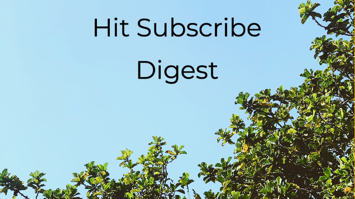 Hit Subscribe Digest: Enjoying Downtime